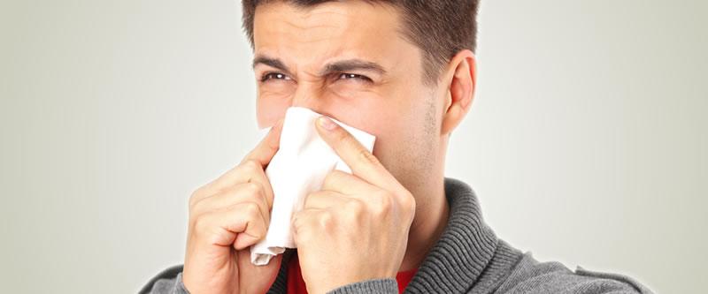 Alergia de oficina