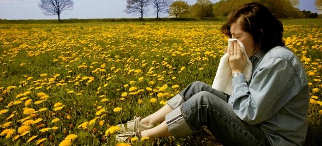 Limpieza doméstica para reducir los efectos de la alergia primaveral 1